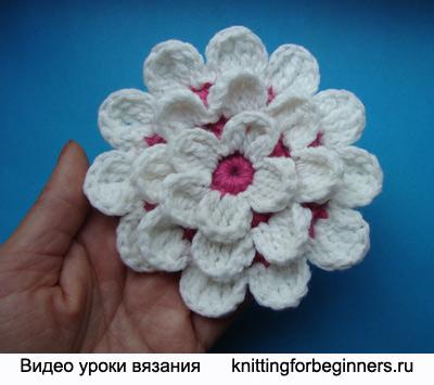 как вязать георгин, вязание георгина крючком, вязаные цветы, видео урок вязания, схема вязания георгина крючком