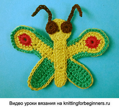 бабочка крючком, мотылёк