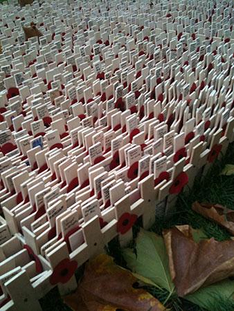 11 ноября, мак вязание крючком